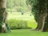 adare-golf-classic-13
