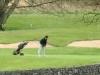 adare-golf-classic-49