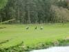adare-golf-classic-64
